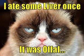 I ate some Liver once  It was Offal...
