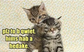 plz to b qwiet. hims hab a hedake.