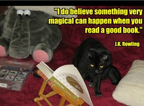 """I do believe something very magical can happen when you read a good book."""