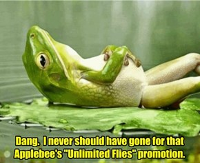 "Dang.  I never should have gone for that Applebee's ""Unlimited Flies"" promotion."
