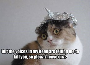 But the voices in my head are telling me to kill you, so pleaz 2 leave onz?