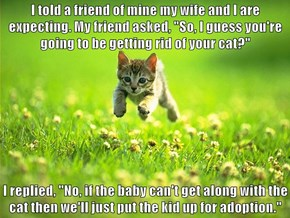 """I told a friend of mine my wife and I are expecting. My friend asked, """"So, I guess you're going to be getting rid of your cat?""""  I replied, """"No, if the baby can't get along with the cat then we'll just put the kid up for adoption."""""""
