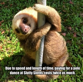 Due to speed and length of time, paying for a pole dance at Slutty Sloths costs twice as much.