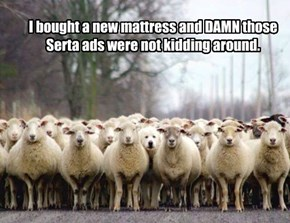 I bought a new mattress and DAMN those Serta ads were not kidding around.