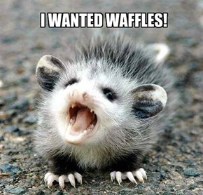 I WANTED WAFFLES!