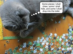 Jigsaw puzzles: fun for the whole family.