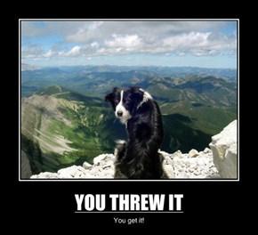 YOU THREW IT