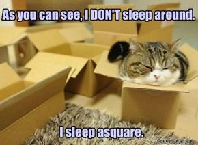 Occasionally, I Sleep Arectangle.