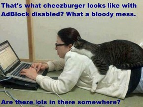 That's what cheezburger looks like with AdBlock disabled? What a bloody mess.  Are there lols in there somewhere?