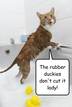 The rubber duckies don't cut it lady!