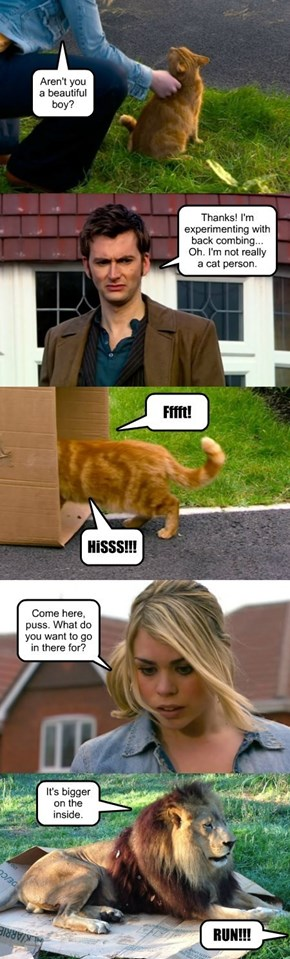 The Doctor should be   nicer to cats.