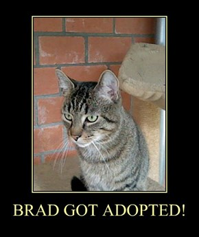 BRAD GOT ADOPTED!