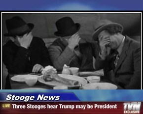 Stooge News - Three Stooges hear Trump may be President