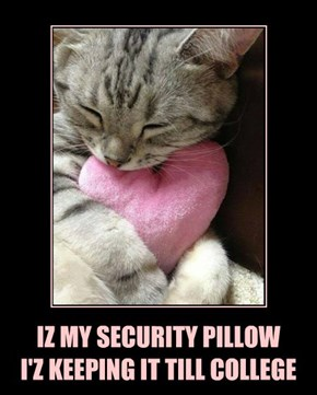 IZ MY SECURITY PILLOW I'Z KEEPING IT TILL COLLEGE