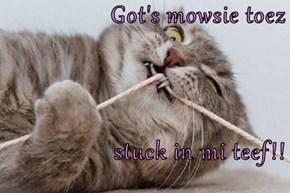 Got's mowsie toez  stuck in mi teef!!
