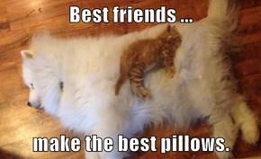 Best friends ...  make the best pillows.