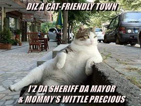 DIZ A CAT-FRIENDLY TOWN  I'Z DA SHERIFF DA MAYOR                                     & MOMMY'S WITTLE PRECIOUS
