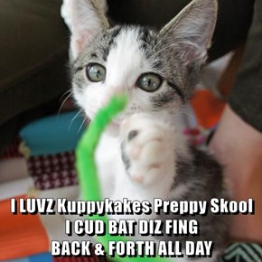 I LUVZ Kuppykakes Preppy Skool                 I CUD BAT DIZ FING                                    BACK & FORTH ALL DAY