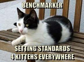 BENCHMARKER  SETTING STANDARDS                        4 KITTEHS EVERYWHERE