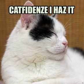 CATFIDENZE