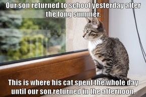 Our son returned to school yesterday after the long summer.  This is where his cat spent the whole day until our son returned in the afternoon.