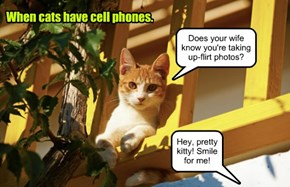 When cats have cell phones.