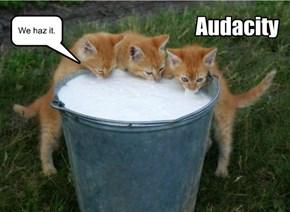 Audacity.