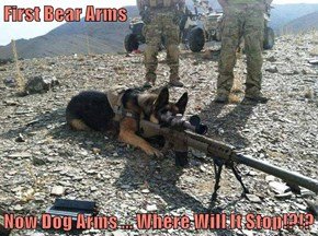 First Bear Arms  Now Dog Arms ... Where Will It Stop!?!?