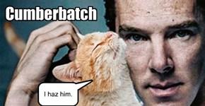 Cumberbatch.