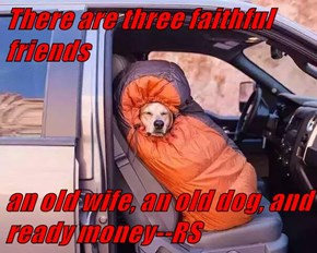 There are three faithful friends  an old wife, an old dog, and ready money--RS