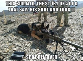THIS SUMMER, THE STORY OF A DOG THAT SAW HIS SHOT AND TOOK IT  SPOT REMOVER