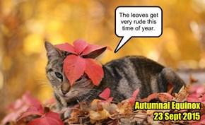Autumnal Equinox 2015