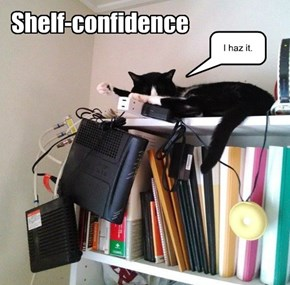 Shelf-confidence.