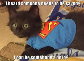 You Can Be MY Hero Anytime!
