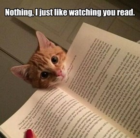 Nothing, I just like watching you read.