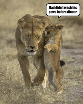 Dad didn't wash his paws before dinner.