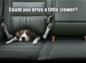 Could you drive a little slower?