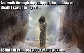 As I walk through the valley of the shadow of death I say unto myself...  I SHALL NEVER... USE APPLE MAPS AGAIN...