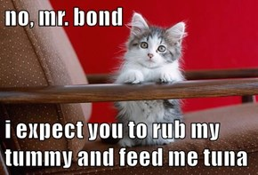 no, mr. bond  i expect you to rub my tummy and feed me tuna