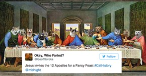 History Books Are Purr-Fectly Replaced With Cats Using The Hashtag #CatHistory