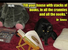 """Fill your house with stacks of books, in all the crannies  and all the nooks."""