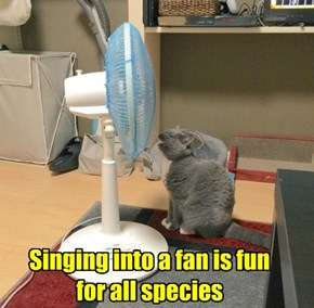 Singing into a fan is fun for all species