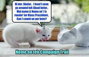 KKPS Fall 2015: Nemo takes hiz run for Klass Prezzident bery seriously an' takes ebery opportunities to ask for votes from Skolars..