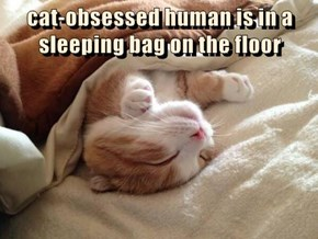 cat-obsessed human is in a sleeping bag on the floor