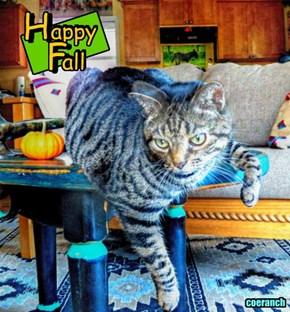Ruffian says Happy Fall....
