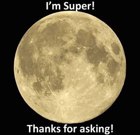 Big Gay Moon