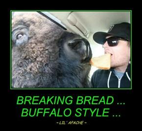 BREAKING BREAD ... BUFFALO STYLE ...