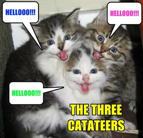 THE THREE CATATEERS