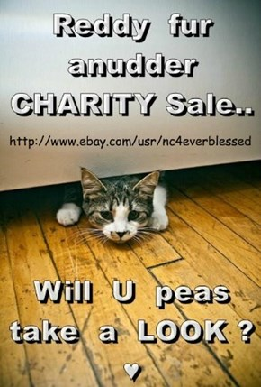 Charity Sale on eBay http://www.ebay.com/usr/nc4everblessed