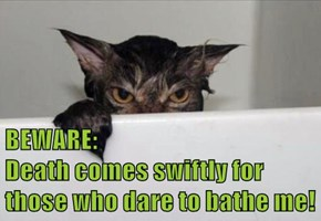 BEWARE:                                   Death comes swiftly for those who dare to bathe me!